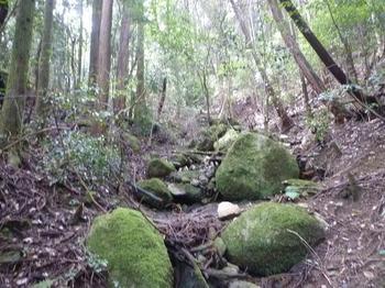 P1020633殿岩への小谷.JPG