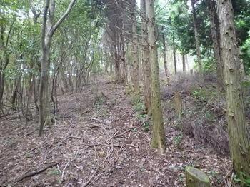 P1020663植林境尾根(華山方向).JPG