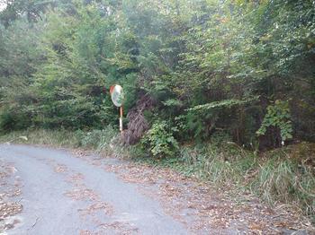 P1030105林道合流点.JPG