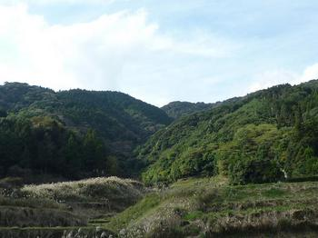 P1030122徳仙山遠望(谷の上部に覗く).JPG