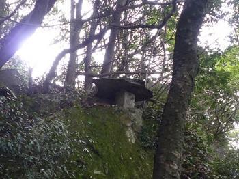 P1030867岩上の石灯篭(右上).JPG