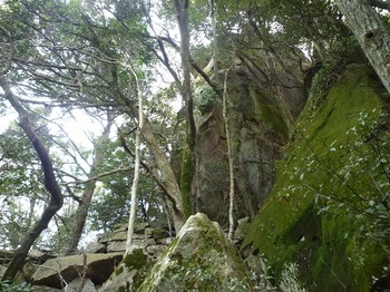 P1030873大岩.JPG