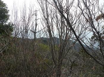 P1030879山頂から南ヶ岳方面.JPG