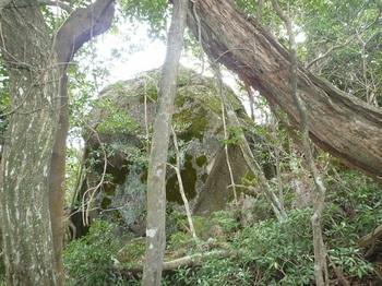 P1030885南ヶ岳山頂大岩.JPG
