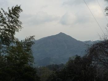P1040003林道大平線から眺めた桃ヶ浴山.JPG