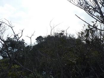 P1040032桃ヶ浴山.JPG