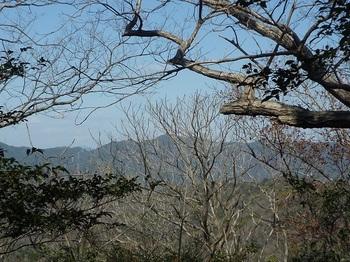 P1040129樹間に猿ヶ岳.JPG