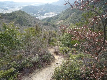 P1040257自由ヶ丘団地コース山道.JPG