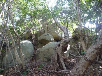 P1040448重ね岩.JPG