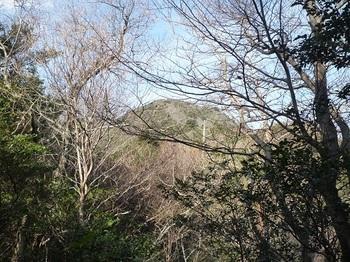 P1040453樹間に山頂.JPG