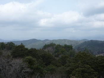 P1040673鉄塔地からの展望(北方向・魚釣山)(広角).JPG