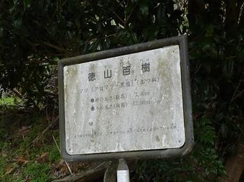 P1040771徳山百樹案内版.JPG