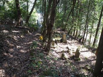 P1040920墓地(逆方向).JPG