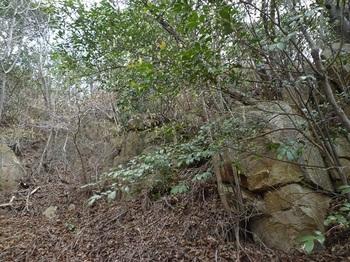 P1050026岩稜.JPG