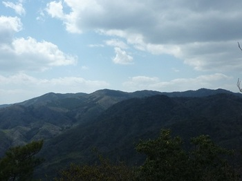 P1050028太鼓ヶ嶽、杉山.JPG