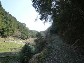 P1050069林道.JPG