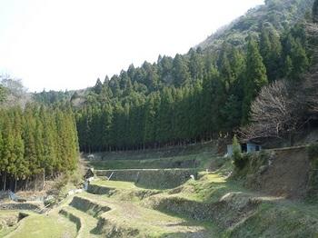 P1050072山道・トタン小屋.JPG