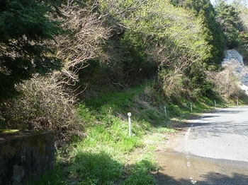 P1050163巡視路入口.JPG