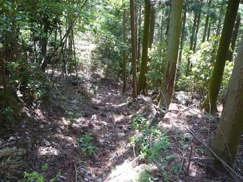 P1050693植林境の山道.JPG