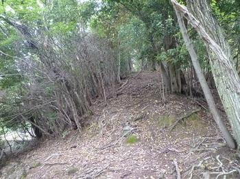 P1050731山道分岐(左・逆方向).JPG