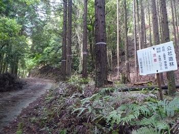 P1050863公社造林看板.JPG