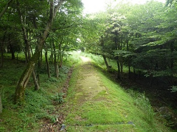 P1060101舗装遊歩道出合い(逆方向).JPG
