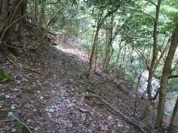 P1060194斜面のそま道.JPG
