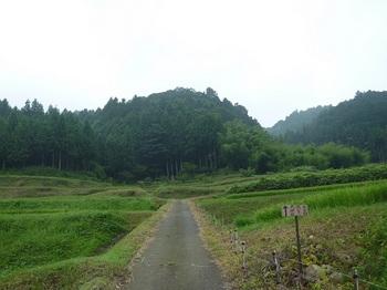 P1060228農道・道標.JPG