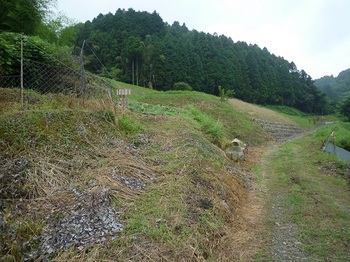 P1060229分岐・登山道入口.JPG