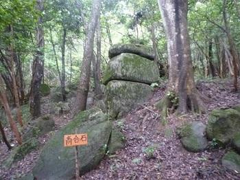 P1060245高合石.JPG