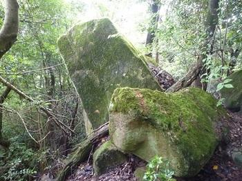P1060247特徴のある岩.JPG