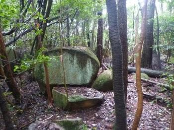 P1060252特徴のある岩.JPG