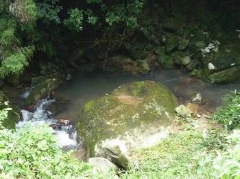 P1060288蛇耳岩.JPG
