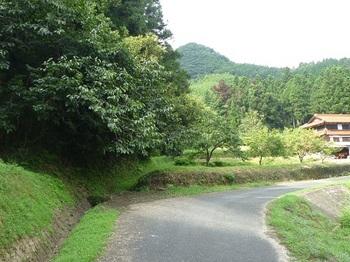P1060298登山口.JPG