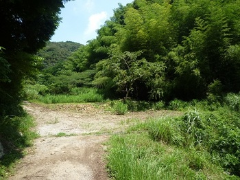 P1060331林道入口(分岐部).JPG