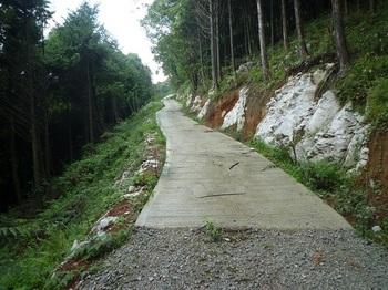 P1060452コンクリート舗装.JPG