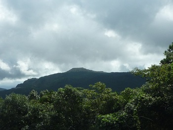 P1060453林道から石灰石採掘場.JPG