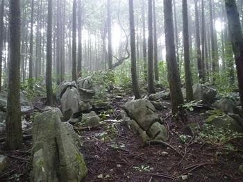 P1060463山頂部の石灰岩.JPG