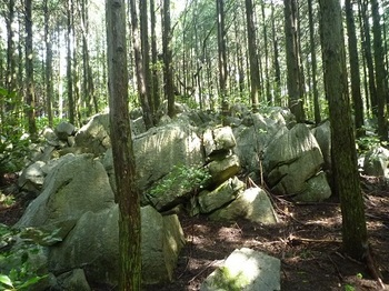 P1060469山頂部手前の石灰岩.JPG