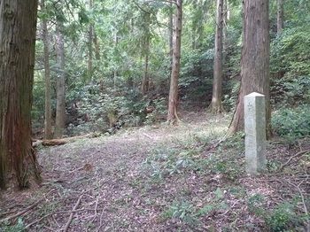 P1060506山王日吉神社跡地と石碑.JPG