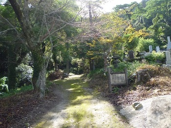 P1060595参道・墓地.JPG