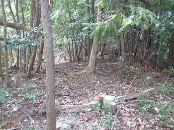 P1060632山頂(逆方向).JPG