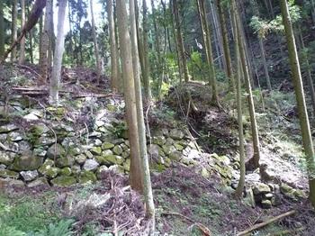 P1060639石垣の堰堤(下側から逆方向).JPG