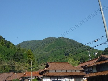 P1060664殿河内集落から白水山.JPG