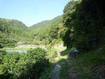 P1060670果樹園沿いの山道・墓.JPG