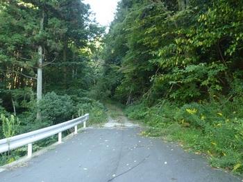 P1060705新設林道から林道へ.JPG
