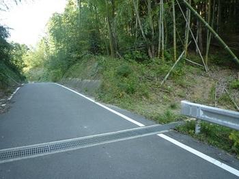 P1060721新設林道への下降点.JPG
