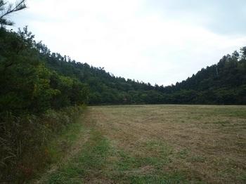 P1060745上部の牧草地.JPG