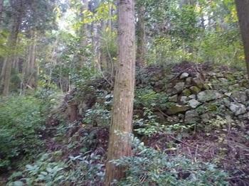 P1060795段状の石垣.JPG