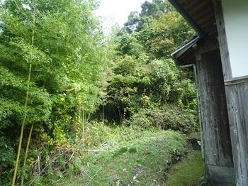 P1060838山道入口.JPG